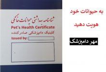 تصویر از هزینه شناسنامه سگ شیراز : صدور با مهر دامپزشکی یارا ۳۰ هزارتومان